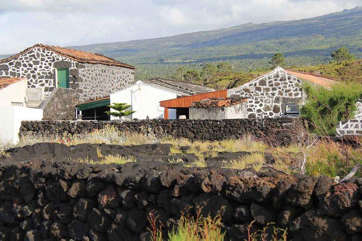 Pico Islands, Azores. Photo by Leila Monteiro Lins. DISCOVER magazine.