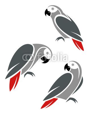 Stylized African Grey Parrot