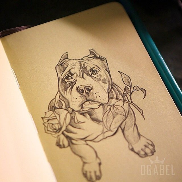 A better shot of last nights pup. #bully #ogabel #drawing