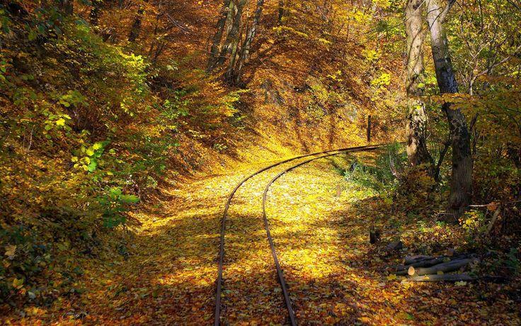 #LES DEREVYA, #ZHELESNAYA, #traviesas, #rieles, #carreteras, #ramitas, #follaje, #amarillo, #otoño, #deja