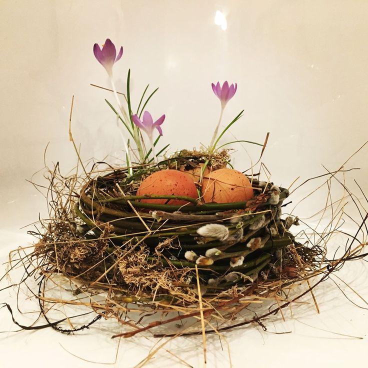 Крокусы в гнезде Пасхальный декор