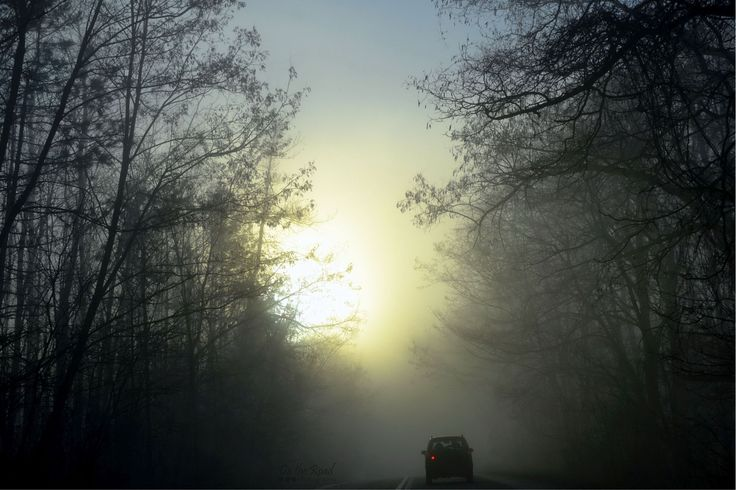 Early morning drive to Timisoara.