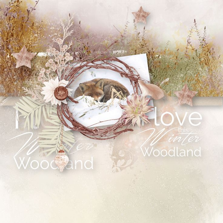 """Winter Woodland"" by BooLand Designs, https://www.digitalscrapbookingstudio.com/digital-art/bundled-deals/winter-woodland-bundle/, http://www.thedigichick.com/shop/Winter-Woodland-Bundle-the-Collection.html, https://pickleberrypop.com/shop/product.php?productid=63211&page=1, photo Pixabay"