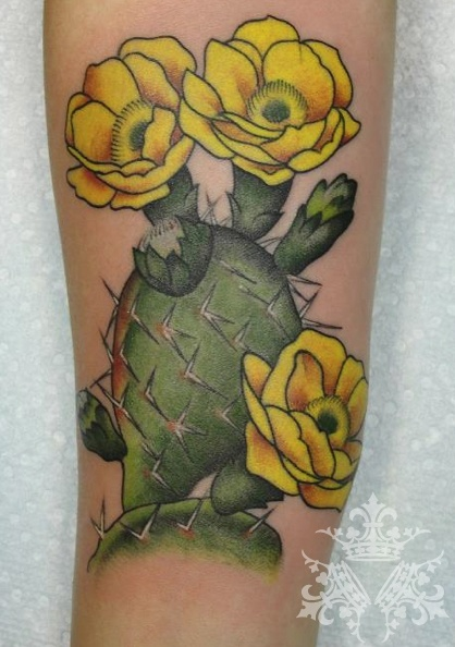 prickly pear tattoo  except watercolor with orange  red  or pink    Prickly Pear Tattoo