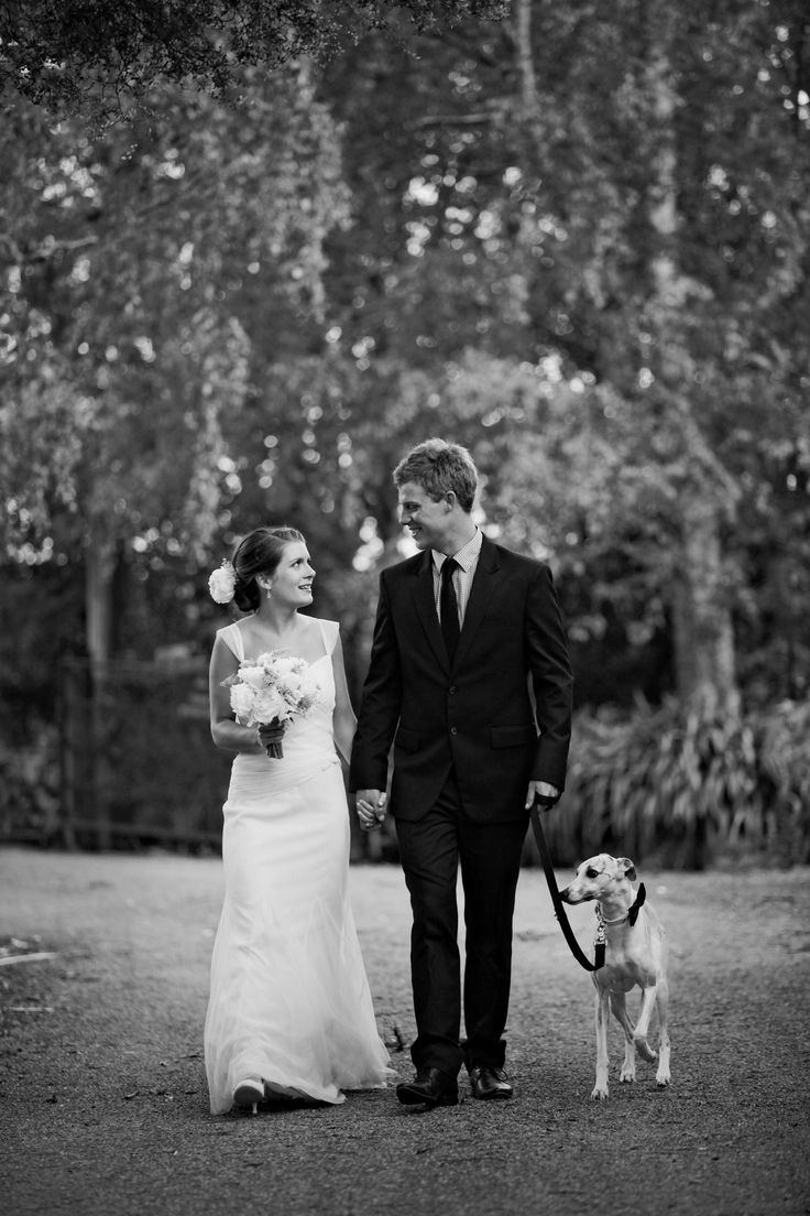 Bride and groom wedding photos with dog