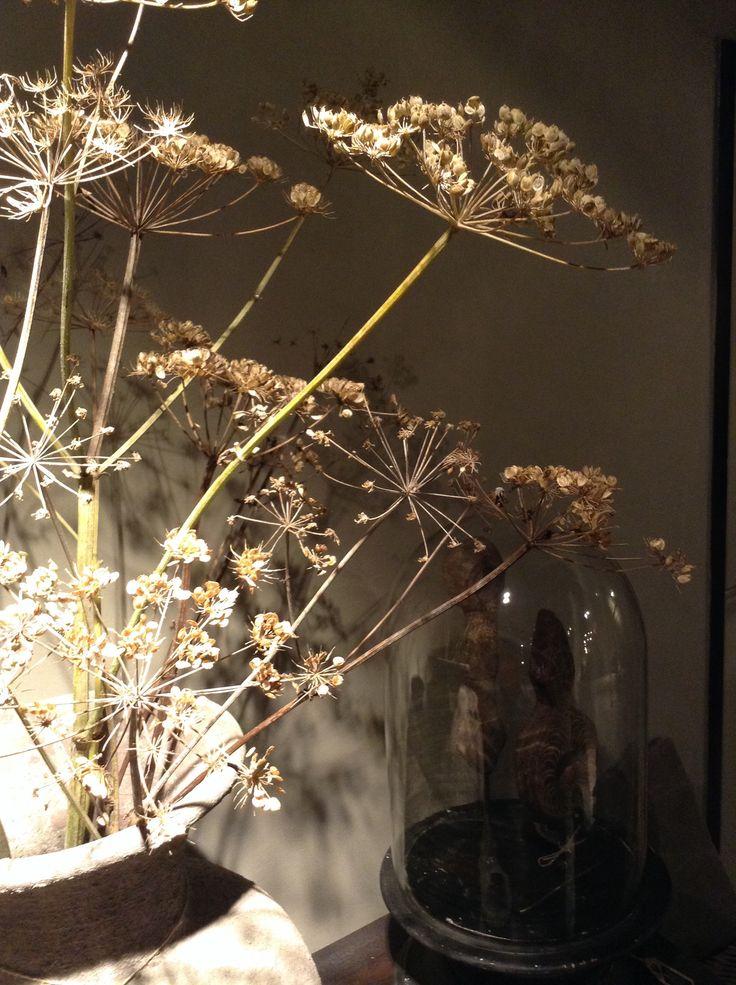 Berenklauw in originele waterkruik, bij Days At Home in Oosterbeek. www.daysathome.nl