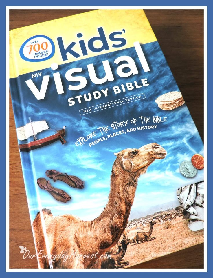 If you have a visual learner at home and are looking for ways to get them tied into the Word of God, then let me introduce you to this fabulous new Bible from Zonderkidz #review #kidmin #kids #Bible #NIV @zonderkidz