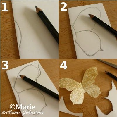 Drawing a Butterfly to Make a Craft Template
