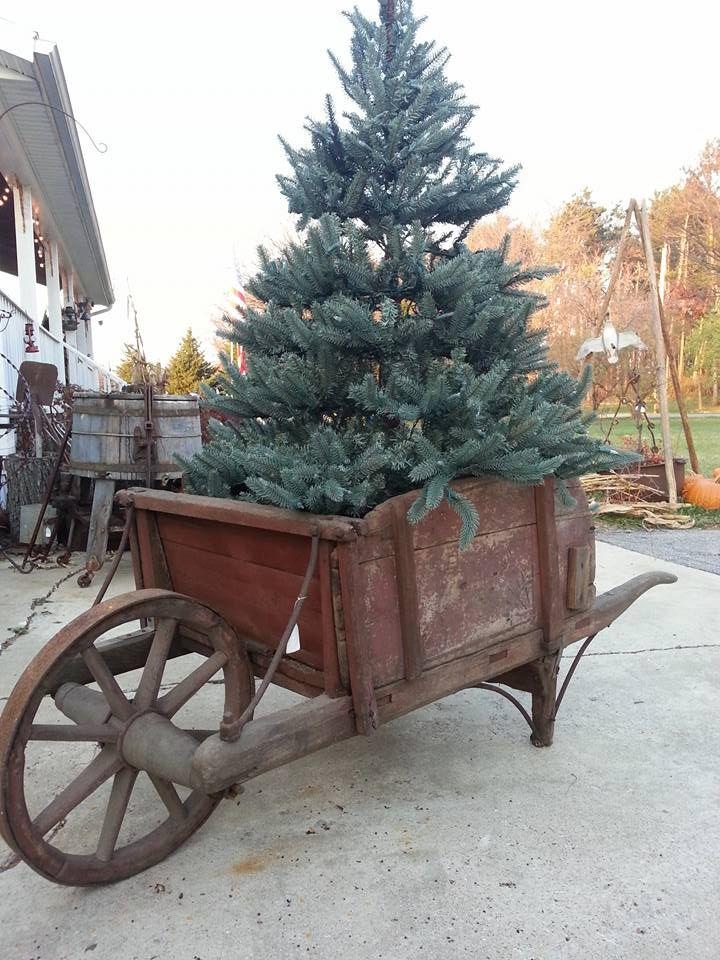Christmas Tree .... Freckle Farm Primitives