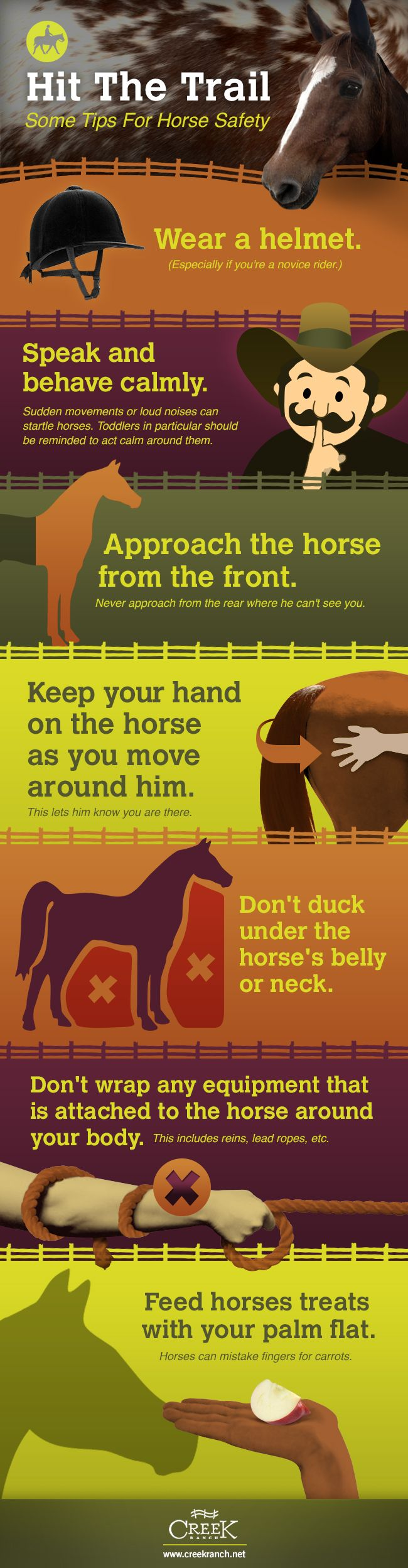 A few tips for safety around the ranch. #riding #horses