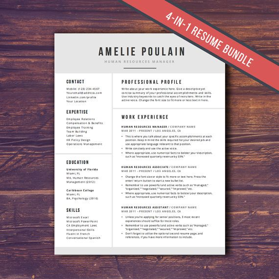 Professional Resume Template for Word  4Pg by theResumeMaker