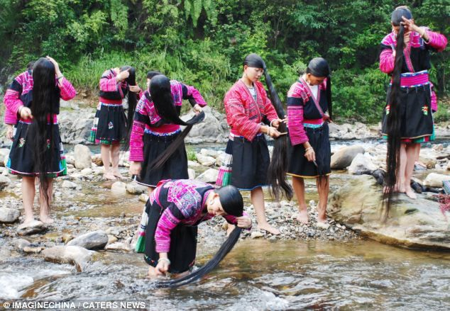 China | Red Yao women, a minority ethnic group from Huangluo Yao Village in China, have an average hair length of 5.5 feet. The longest locks measure more than 6.8 feet. During the summer and autumn months the women wash their hair in the river.