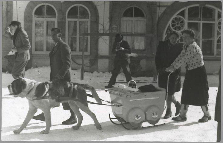 1939 Prinses Juliana met de hond en slee op stap Grindelwald Zwitserland