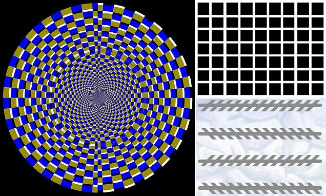 The science behind optical illusions revealed #DailyMail
