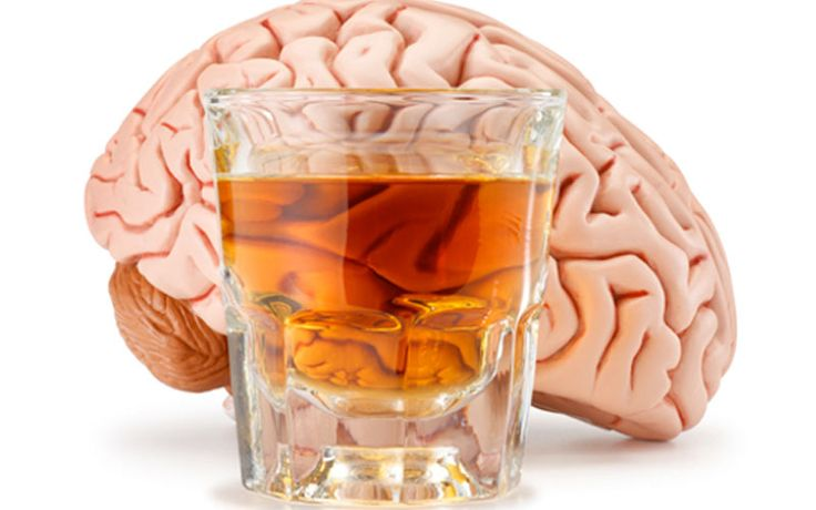 What is Alcoholism Know The 5 Crucial Alcohol Facts 7 Stages of Alcoholism 6 Stages Of Recovery