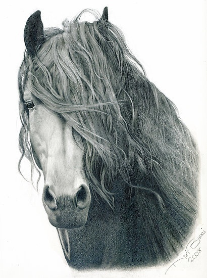 10 splendidi disegni a matita. 10 beautiful drawings in pencil. pinned with Bazaart