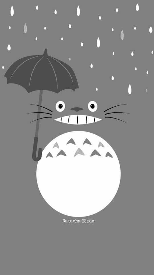 1000 ideas about whatsapp background on pinterest - Totoro wallpaper iphone ...