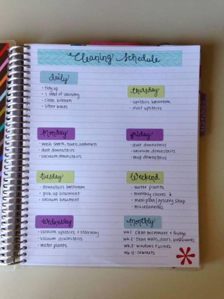 life planner cleaning schedule