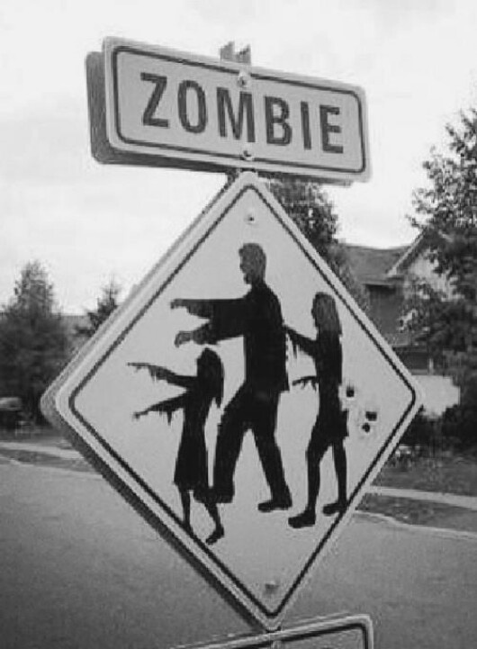 zombie crossing can't wait till October ❤️. Look out