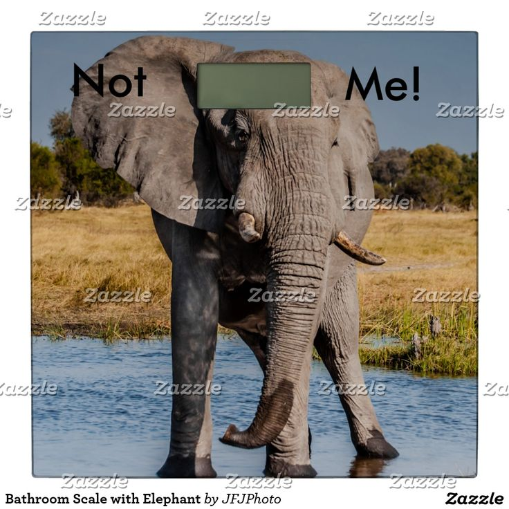 Bathroom Scale with Elephant