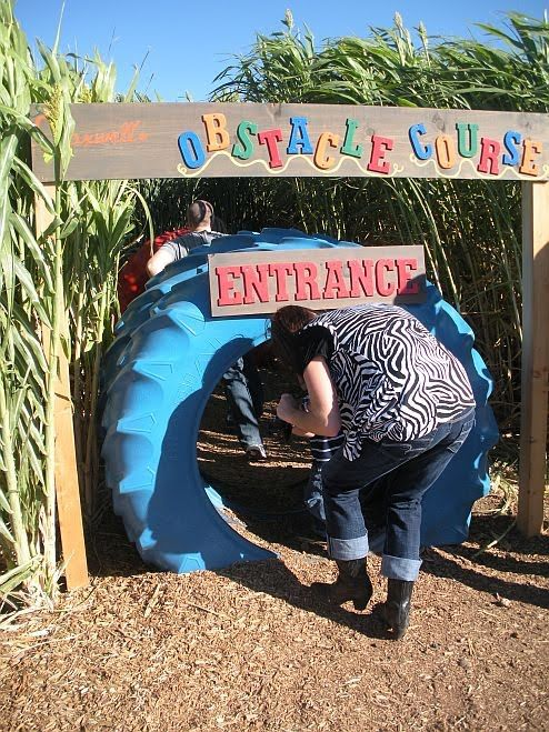 corn maze obstacle course - Google Search