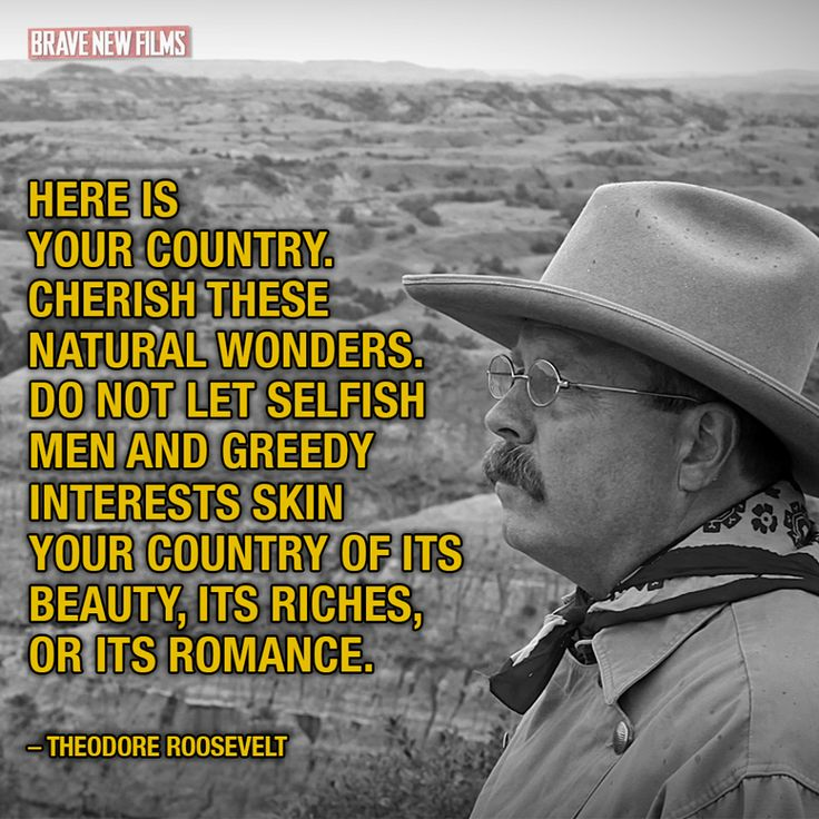 Teddy Roosevelt cherish natural wonders