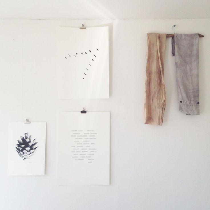 """53 gilla-markeringar, 1 kommentarer - jollygoodfellow (@jollygoodfellow.se) på Instagram: """"Sunday . . . . #flyingV#birds#onthemove #kotten#cone#pinecone #observationer#swedishsummer…"""""""