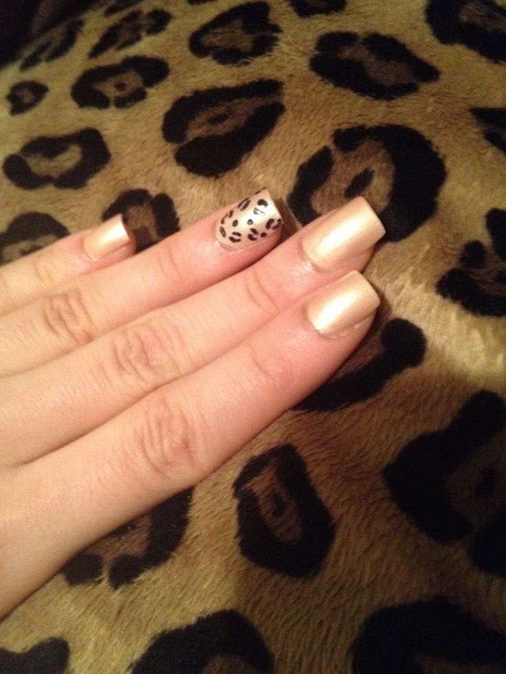Leopard on leopard; neutral with accent nail