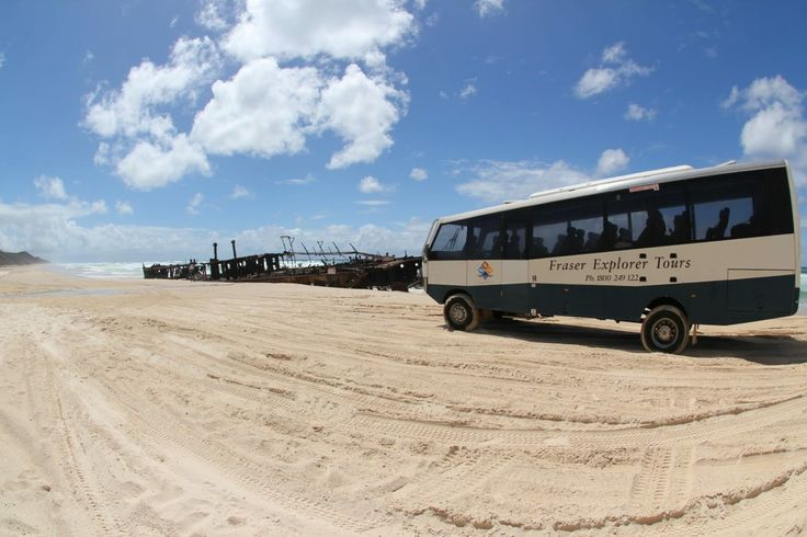 Off-roading on the largest sand island in the world. Eco-accredited Fraser Explorer Tours, Fraser Island, Queensland.  #fraserexplorer #fraserisland #queensland #australia www.fraserexplorertours.com.au  Thanks to Koves for sharing with us.