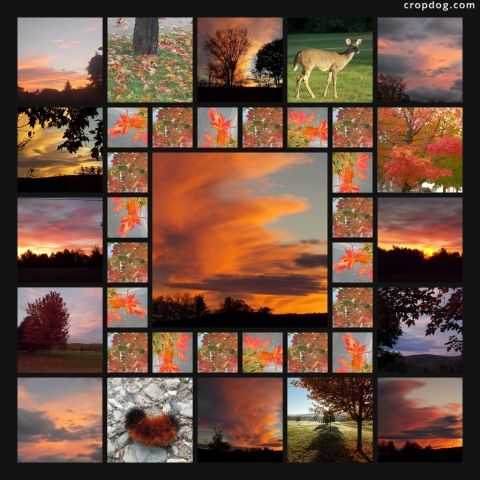 Photo Collage God's Glorious Colors Of Fall