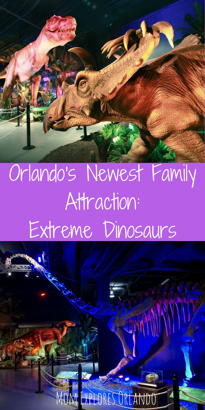 Extreme Dinosaurs Exhibit - Mom Explores Orlando