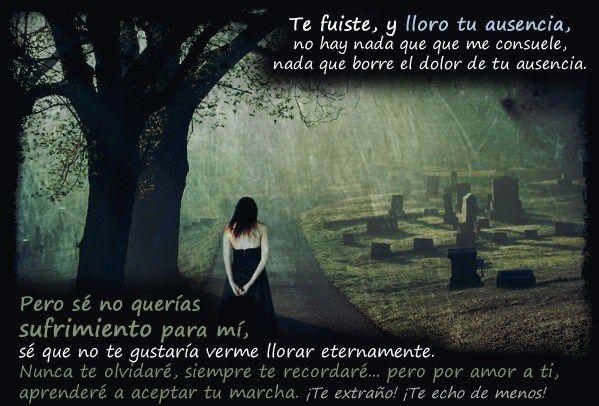 Frases De Dolor Amor Y Tristeza Por La Perdida De Ser Un