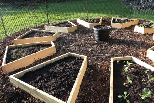 Weed cloth was laid down under this entire garden area, and then raised beds were added in a round pattern.