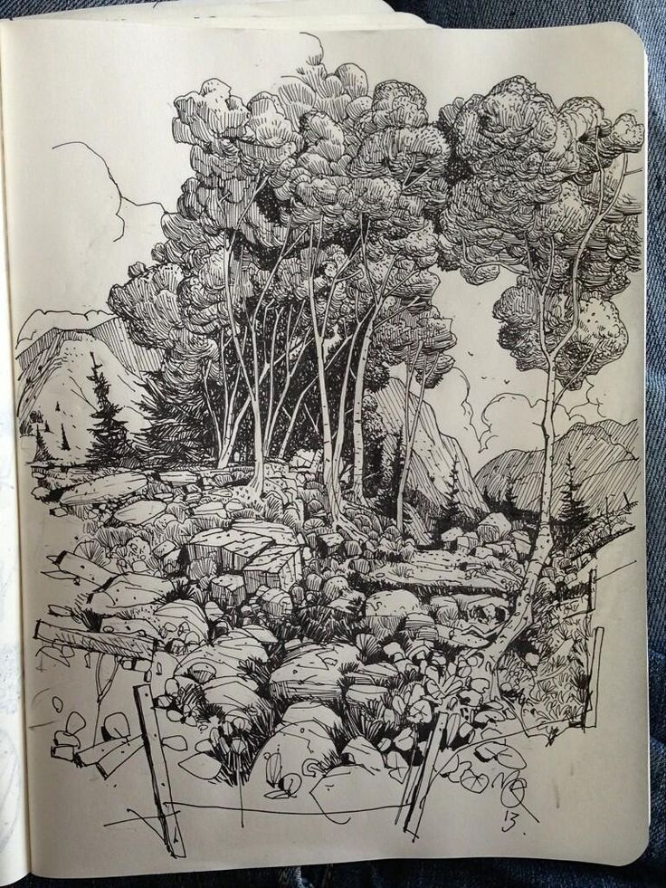 sketchbook forest - Google Search
