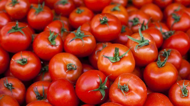 Oh nee. Nee, nee, nee! Tomatenvlek op je mooie witte shirt. Het lijkt haast onmogelijk om deze er ooit nog uit te krijgen. Maar... niets is minder waar!