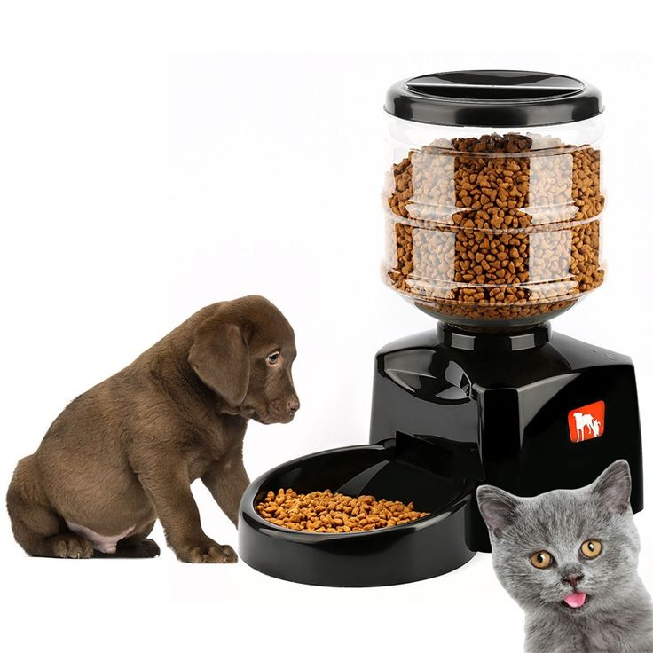 New 5.5 Liter Automatic Dog Feeder Meal Large Automatic Pet Dog Cat Feeder Electronic Portion Control  Auto Dispenser Bowl