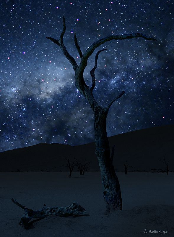 The Milky Way from the oldest Desert on Earth (Sossusvlei, Namib Desert, Namibia).