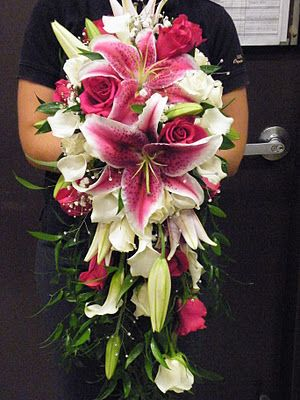 cascading bridal bouquet. star gazer lilies, white mini calla lilies, hot pink roses. Designer~ Graciel. www.instagram.com/thesoulinbloom