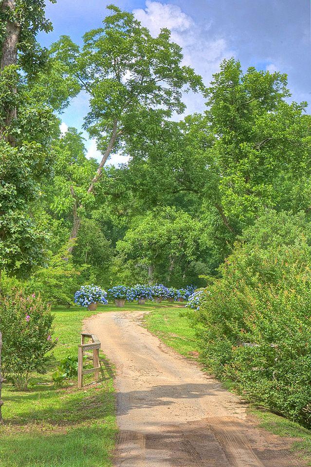20 best Furlow Gatewood images on Pinterest | Blue toms, Blue and ...