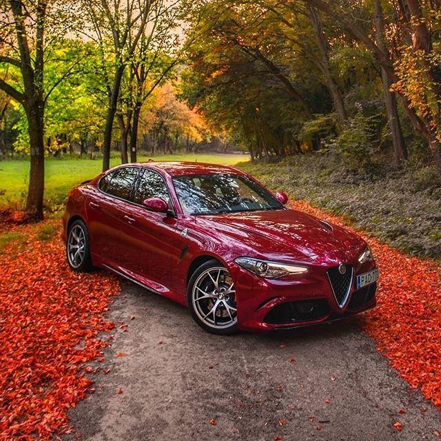 Alfa Romeo Cars, Alfa Romeo, Top Luxury Cars