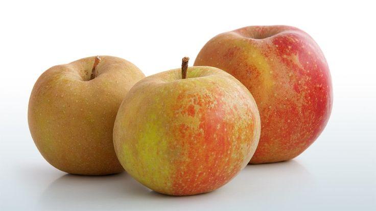 Äpfel sind gesund, aber leider kann sie nicht jeder Mensch vertragen. Was viele Allergiker nicht wissen: Alte Apfelsorten sind häufig gut verträglich. Warum ist das so?