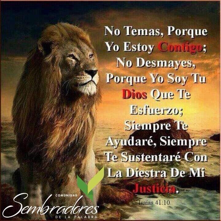 No temas, no tengas miedo, frases espirituales, #frasesdelabiblia #sembradoresdelapalabra #comunidadcatolica #comunidadsempal #rccdecolombia #rccbogota http://www.sembradoresdelapalabra.com/