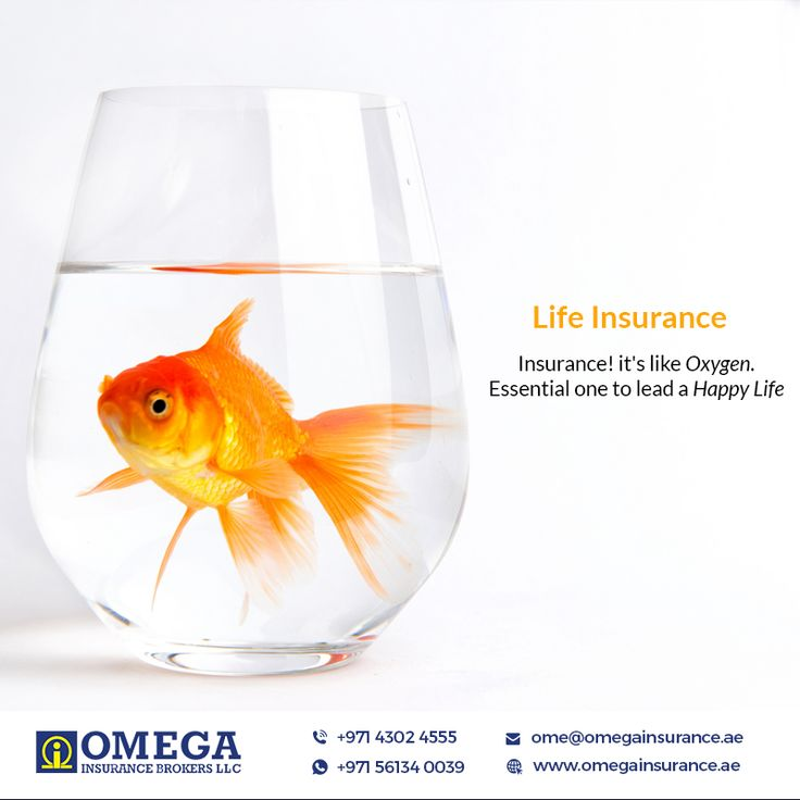 Some plans may be good and some may be important, but to lead a happier life with love and peace in your family, Life Insurance is Essential. #LifeInsurance #OmegaInsurance #InsuranceDubai