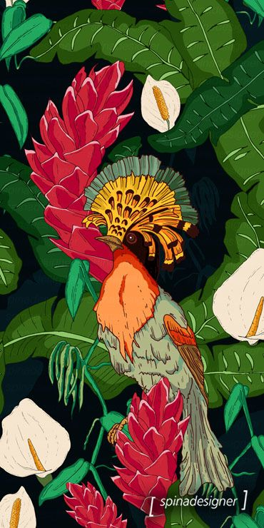 Walter Spina | Tropical Birds #print #pattern #illustration #art #estampa #digitalpainting