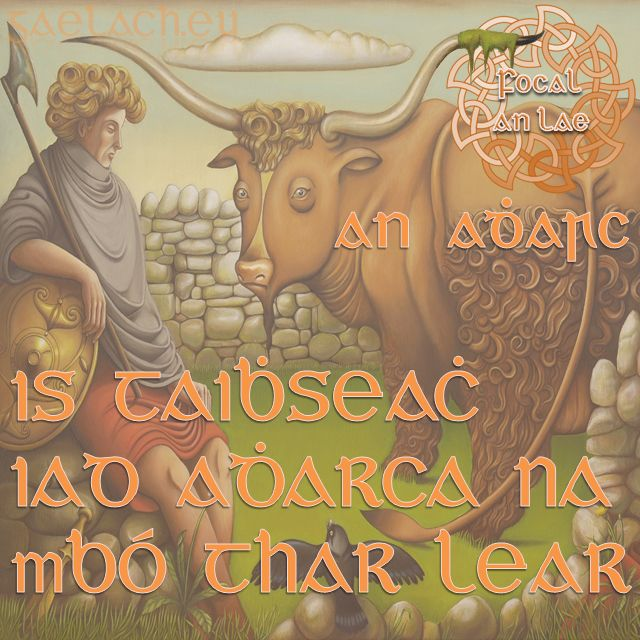 "Is taibhseach iad adharca na mbó thar lear. (""The horns of oversea/foreign cows are always wonderful"" = the grass is always greener on the other side)"