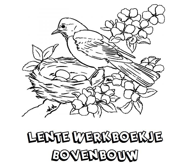 Lente Werkboekje Bovenbouw! (Klik voor de PDF)