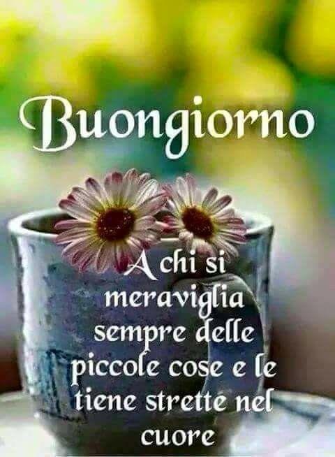 Buongiorno- buon pomeriggio o buona sera, amore mio BF! ;)♥
