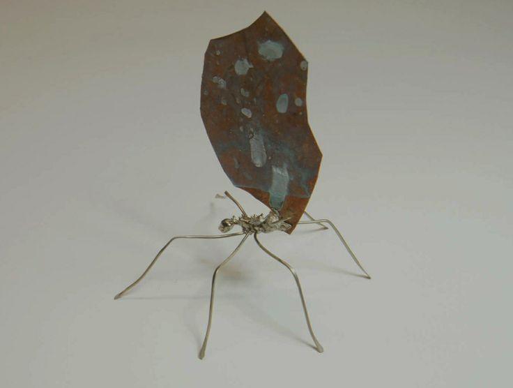hormiga, plata, cobre