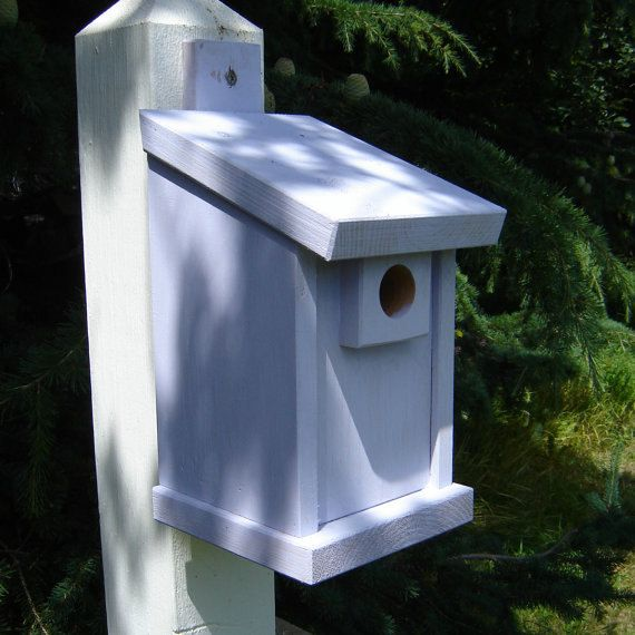 1000 Images About Birdhouse Project On Pinterest Bird