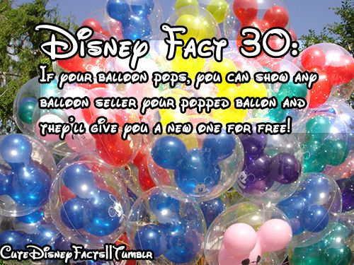Only at the most magical place on earth =]! I've also heard they give you a new one if your balloon flies away...
